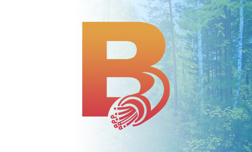 BBB_logo_General